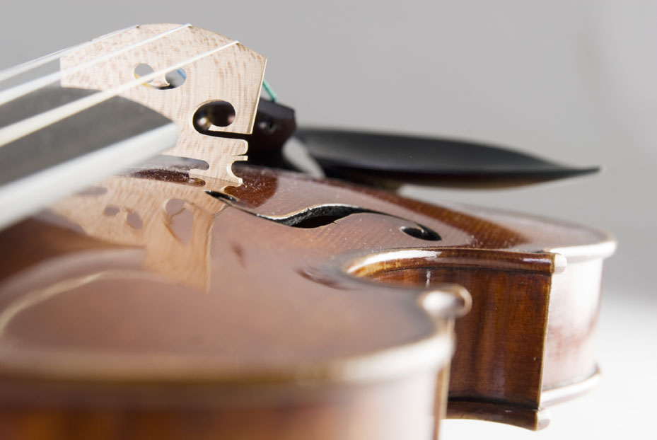 Goodrich Violin Shop, LLC